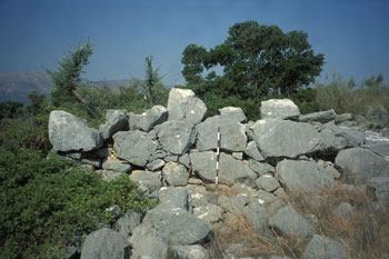A well-preserved wall at Kalamianos, showing the distinctive Mycenaean masonry style known as cyclopean. Photo: Thomas Tartaron, 2001.